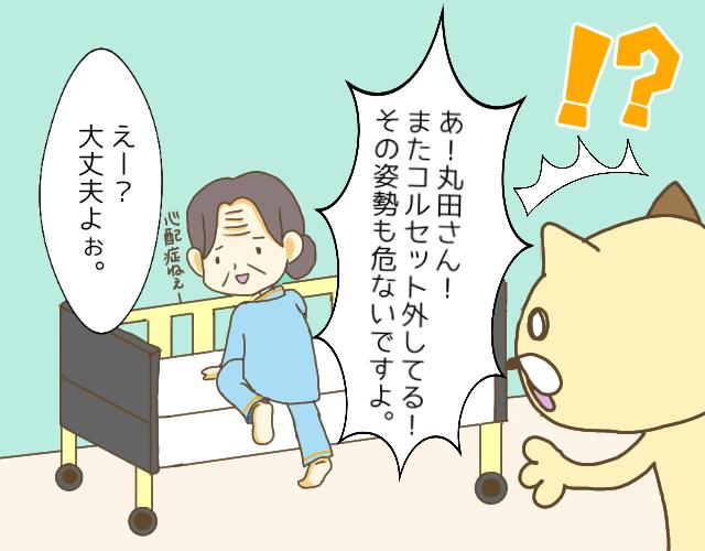 ベッドに戻る高齢女性と茶色い猫