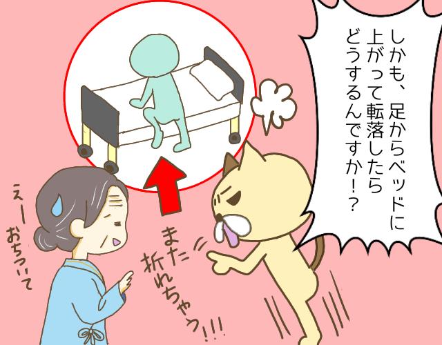 怒る茶色い猫と怒られる高齢女性